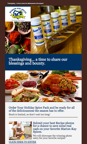 Marion-Kay Spices Email Campaign